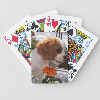 Baralhos De Poker Flores de cheiro dos Cavalier