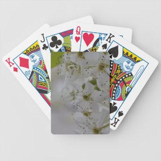 Baralhos De Poker Flores do primavera