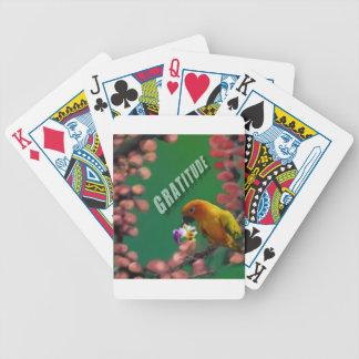 Baralhos De Poker Meus obrigados mais profundos a você