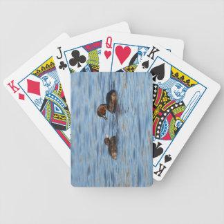 Baralhos De Pôquer Grebe pequeno e pintinho