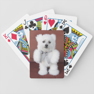 Baralhos Para Pôquer Cartões de jogo - seixos