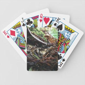Baralhos Para Pôquer Não tropece o cogumelo