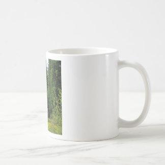 Barraca verde da árvore canecas