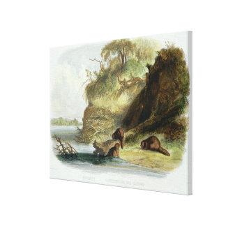 Beaver a cabana no Missouri, chapeie 17 do volume  Impressão De Canvas Esticadas