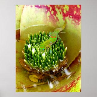 Bebendo do geco da poeira de ouro de um Bromeliad Posters