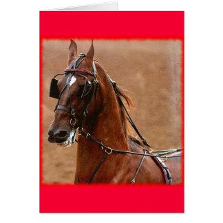 Beira do vermelho da arte de Saddlebred Digital do Cartões