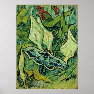 Belas artes da traça de imperador de Van Gogh Poster