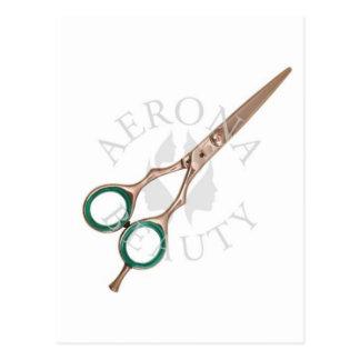 Beleza das Tesouras-Aerona do cabeleireiro Cartão Postal