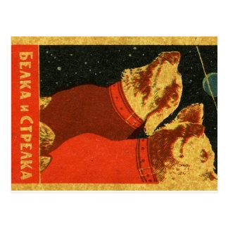 Belka e Strelka Cartão Postal