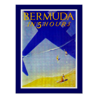 Bermud em 5 horas posters