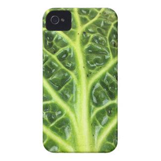 Berza chou couve-de-milão Savoy cabbage vert Capa Para iPhone