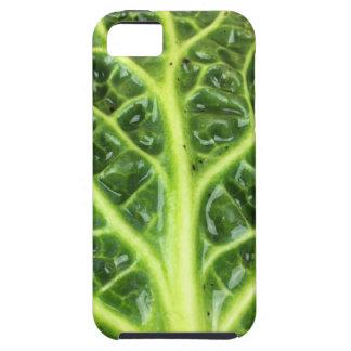 Berza chou couve-de-milão Savoy cabbage vert Capa Para iPhone 5
