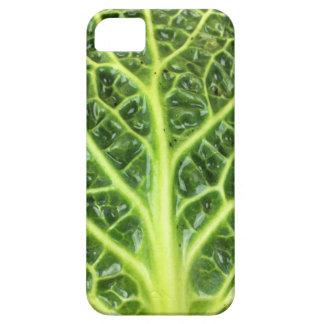 Berza chou couve-de-milão Savoy cabbage vert Capas Para iPhone 5