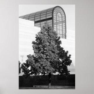 Biblioteca de Michigan & centro histórico Impressão