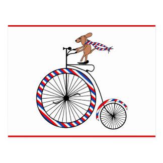 Bicicleta do vintage da equitação do cão no cartão