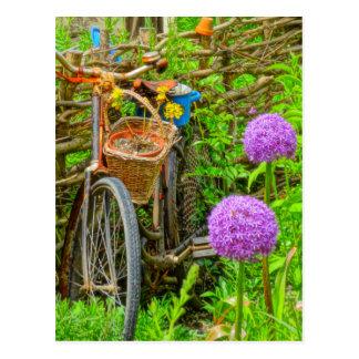 bicicleta do vintage no jardim cartão postal
