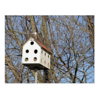 Birdhouse do quintal cartão postal
