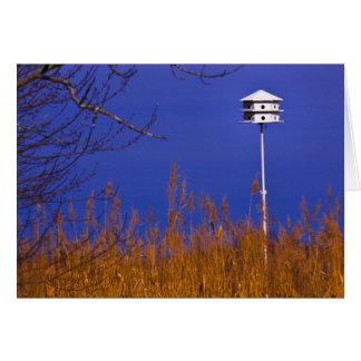 Birdhouse pelo cartão de nota da baía