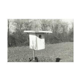 Birdhouse preto e branco em canvas