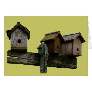 Birdhouses Prim em seguido Cartão Comemorativo
