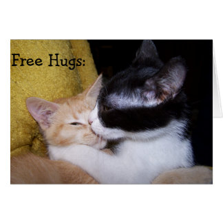 Birthday Card: Sweet Kittens de Hugs give free! Cartão Comemorativo