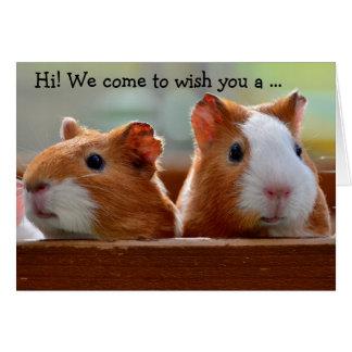 Birthday Card: Two Guiné Pigs Cartão Comemorativo