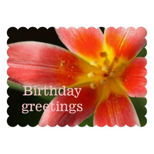 Birthday greetings convites personalizado