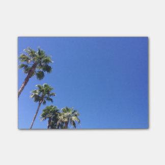Bloco De Notas da palmeira