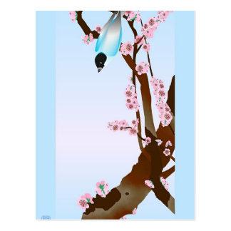 Bluebird - cartão