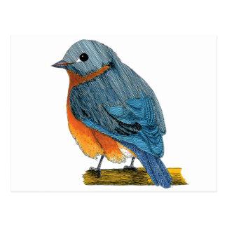 Bluebird do cartão da felicidade