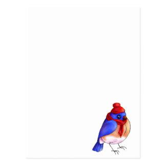 Bluebird do inverno cartão postal