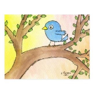 Bluebird em uma árvore cartão postal