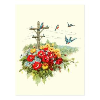 Bluebirds na linha eléctrica cartão postal