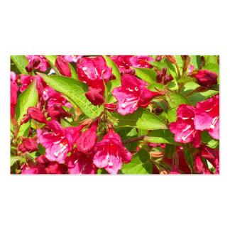 blüten vermelhos cartoes de visita