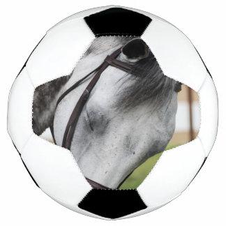 Bola De Futebol Cavalo doce do Appaloosa