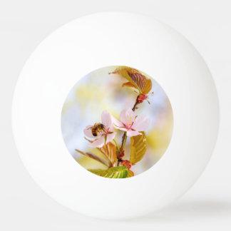 Bolinha De Ping Pong Abelha em uma flor da cereja