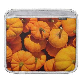Bolsa Para iPad Abóboras