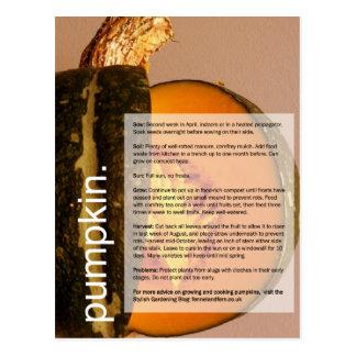 Bom guia crescente: Abóbora & acelga Cartão Postal