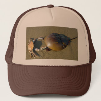 Boné A dança Crabs o chapéu