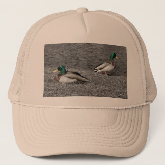 Boné Chapéu do pato do pato selvagem