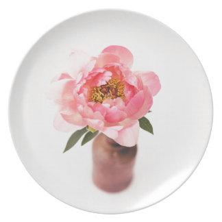 Bonito no rosa louças de jantar