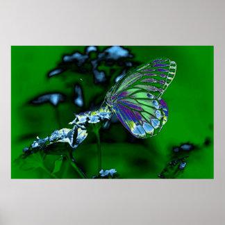 Borboleta bonita na flor - foto negativa 2 poster
