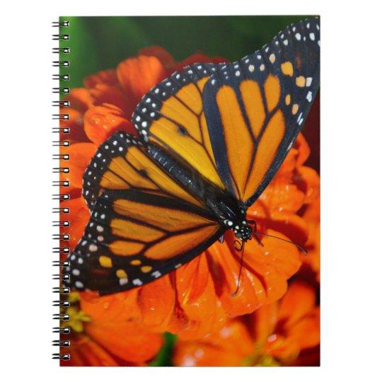 Borboleta de monarca cadernos espiral