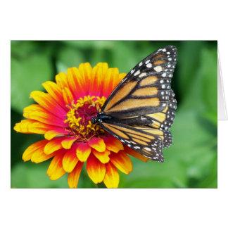 Borboleta de monarca cartão comemorativo