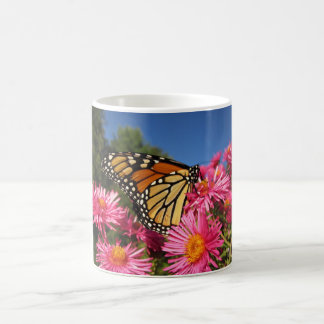 Borboleta de monarca em ásteres caneca de café