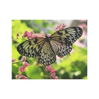 Borboleta preto e branco na flor cor-de-rosa impressão em tela