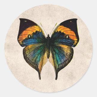 Borboletas da ilustração 1800's da borboleta do adesivo
