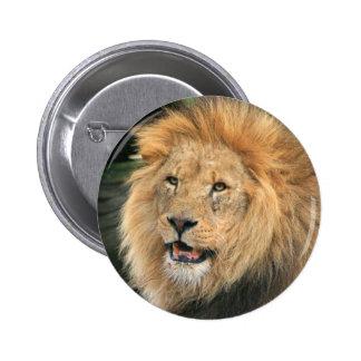Botão bonito masculino principal da foto do leão,  bóton redondo 5.08cm