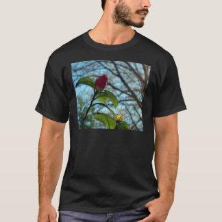 Botão Camisetas