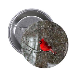 botão com a foto do cardeal masculino bóton redondo 5.08cm